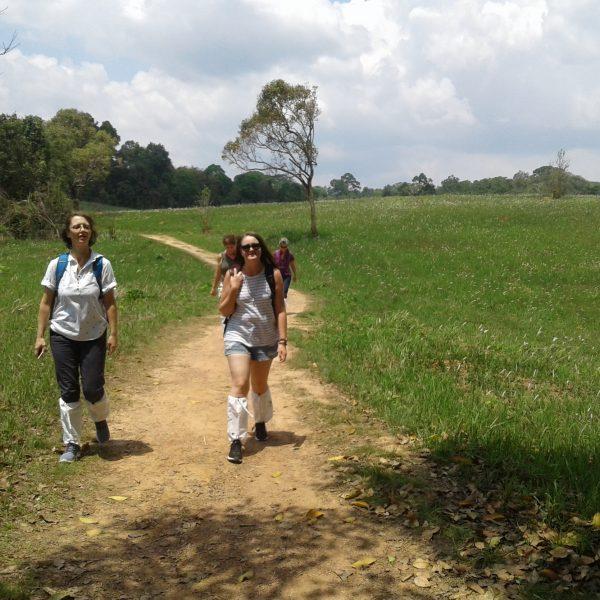 KhaoYai National Park Nakhon Nayok